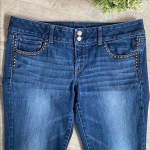 AE Stretch Artist Crop Studded Jeans, Size 14
